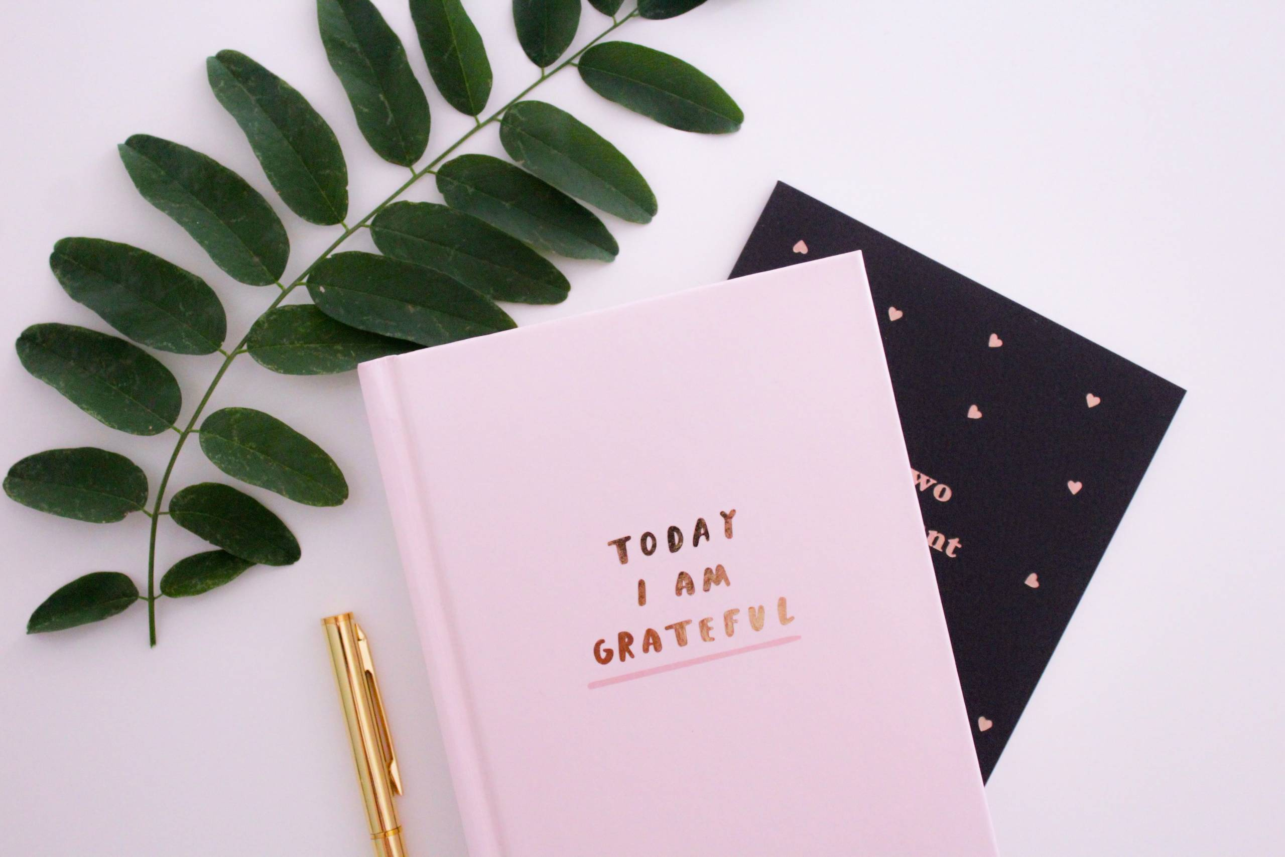 A gratitude journal places you in a more mindful state